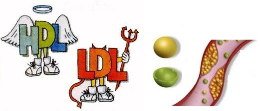dieta-para-bajar-el-colesterol 1