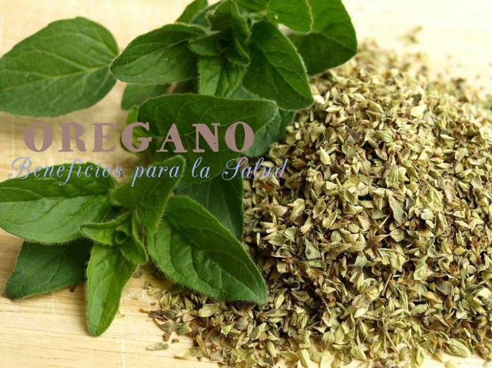 beneficios oregano