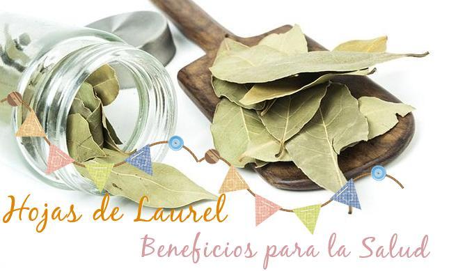 hojas de laurel beneficios salud