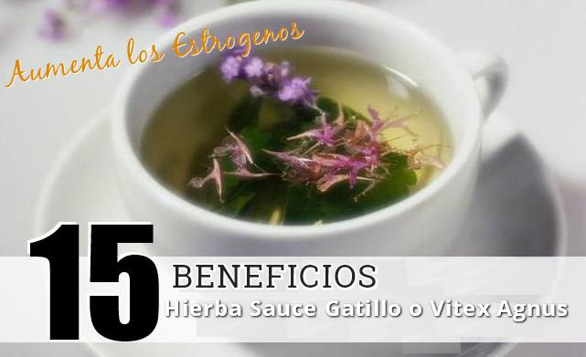 beneficios sauce gatillo chasberry vitex agnus