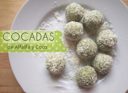 Cocadas de Alfalfa Receta Casera