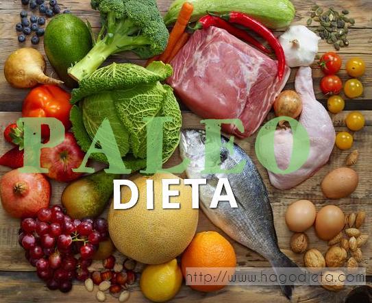 dieta paleo http www hagodieta com