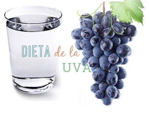 uva dieta http www hagodieta com