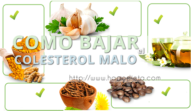 como-bajar-colesterol-malo-http-www-hagodieta-com