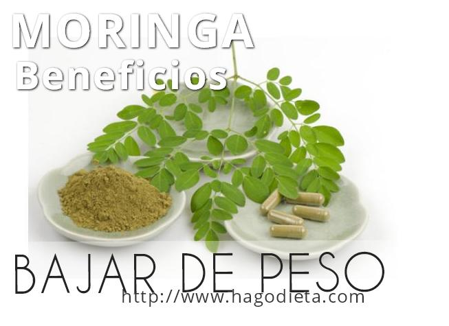 beneficios-moringa-bajar-peso-http-www-hagodieta-com