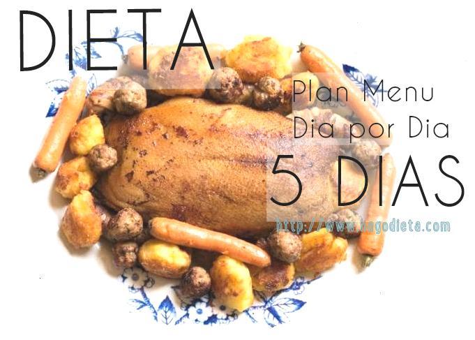 dieta-5-dias-http-www-hagodieta-com