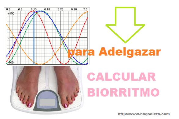Calcular Biorritmo para Adelgazar