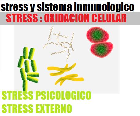 Estres y Sistema Inmunologico Oxidacion Celular que Enferma