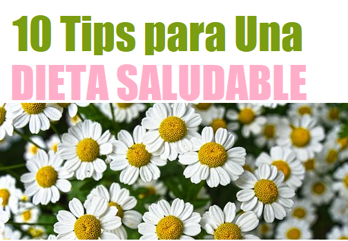 10 Tips Dieta Saludable