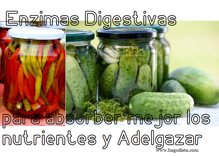 Enzimas Digestivas para Adelgazar