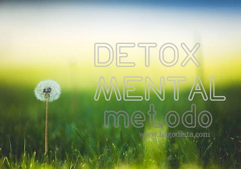 Detox Mental Metodo