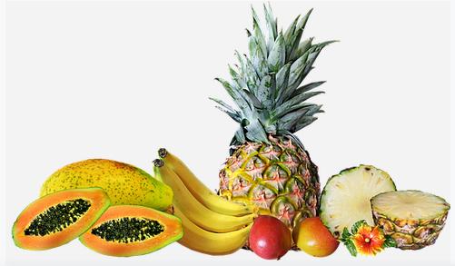 Alimentos con Enzimas