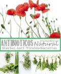 Hierbas Antivirales para proteger los Pulmones