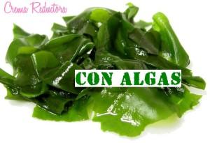 crema reductora con algas