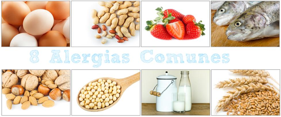 8 alergias comunes