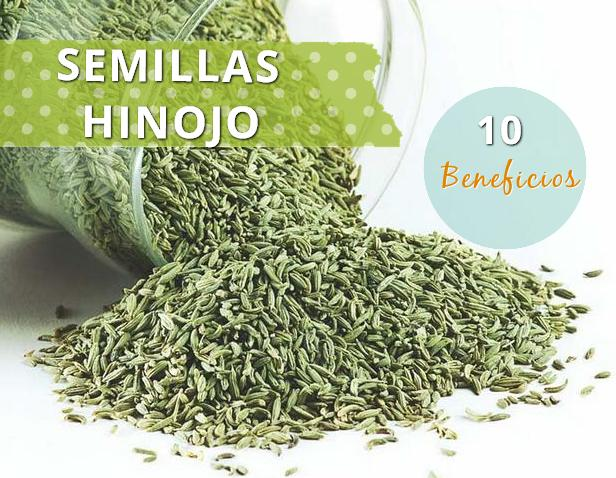 hinojo semillas http www hagodieta com