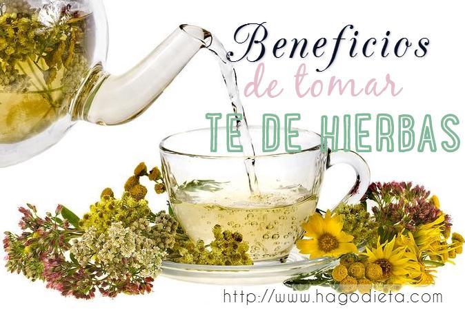 beneficios-te-hierbas-http-www-hagodieta-com