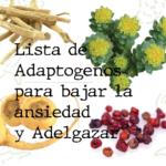 adaptogenos-adelgazar